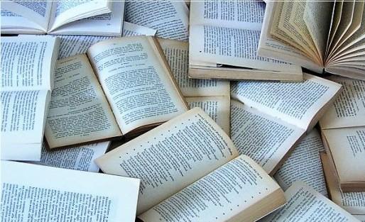 Expurgo | Glosario de términos bibliotecarios